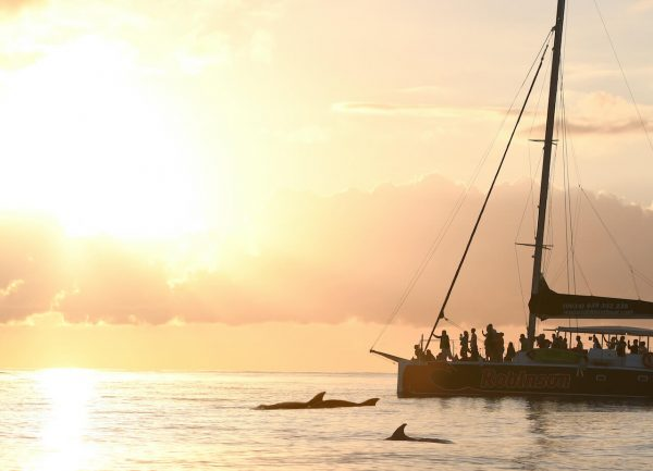 Sunrise with Dolphins Robinson Boat