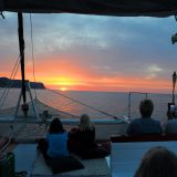 Boat trips Robinson Boat